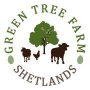 Green Tree Farm Shetlands